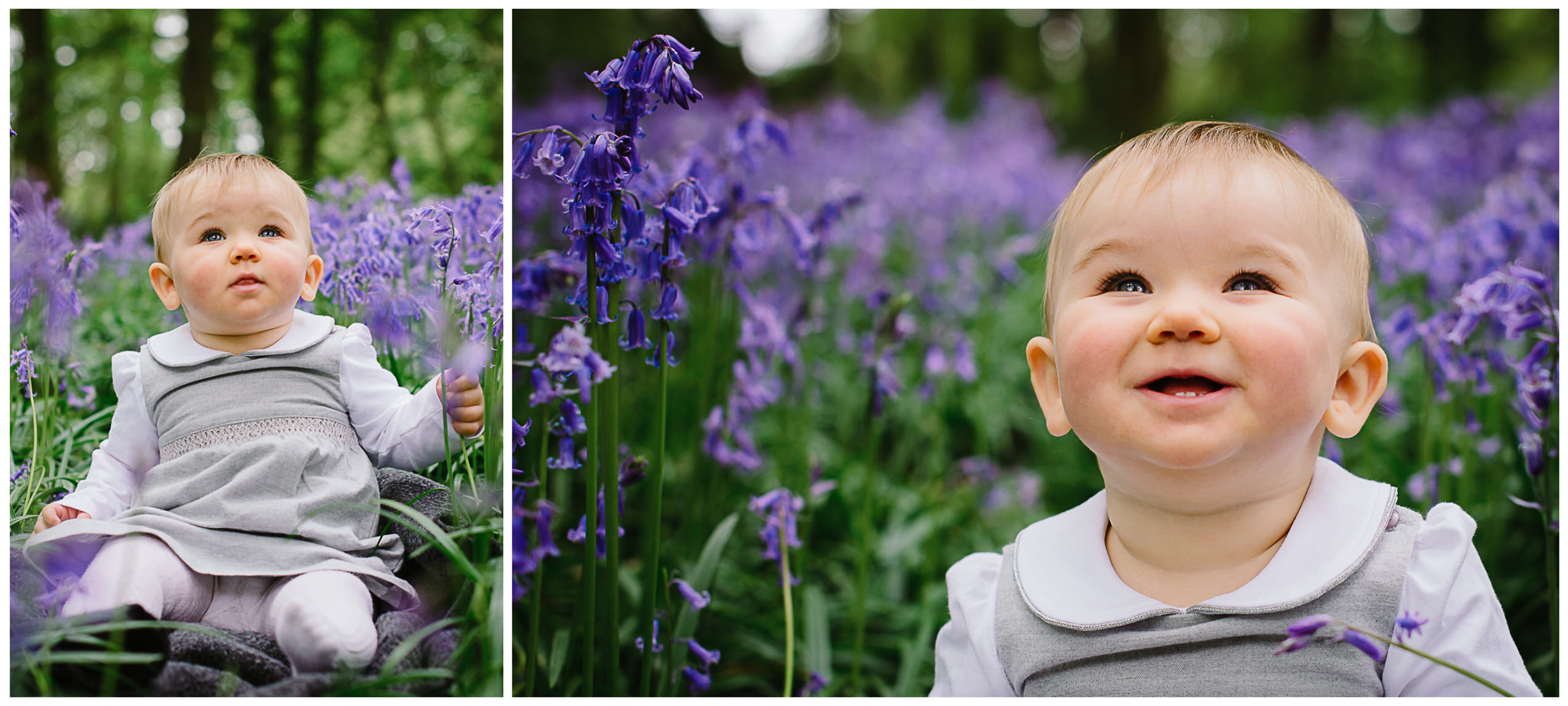 herts bluebell photo shoot